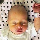 Alice Eichlerová se narodila Ireně Eichlerové z Teplic 8. června  v 8.27 hod. v teplické porodnici. Měřila 47 cm a vážila 2,65 kg.