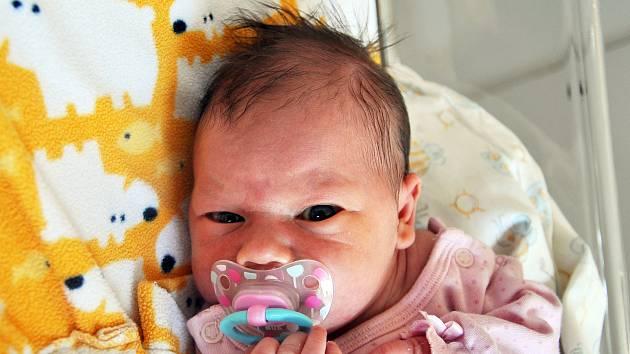 Michaela Vítková se narodila Erice Fedákové z Hrobu 4. září v 9,22 hodin v teplické porodnici. Měřila 49 cm, vážila 3,05 kg.