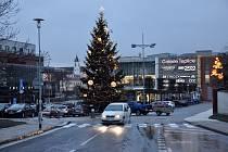 Vánoční strom na Náměstí Svobody v Teplicích v roce 2018