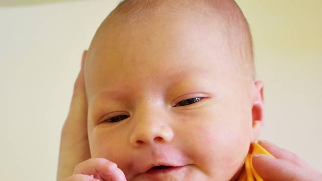 Rozálie Vejsadová se narodila Elišce Ernstové  z Teplic 29. února v 22,36 hodin v teplické porodnici. Měřila 49 cm, vážila 3,80 kg.