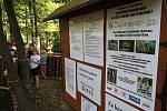 Akce Začarovaný les v Želénkách