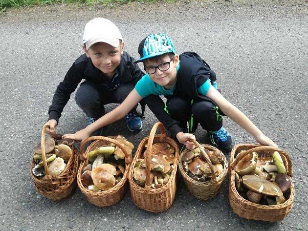 Na snímku s úlovkem z lesů při dovolené na Rokycanska zapózovali bratranci Vašek a Josef Müllerovi z Oseku.