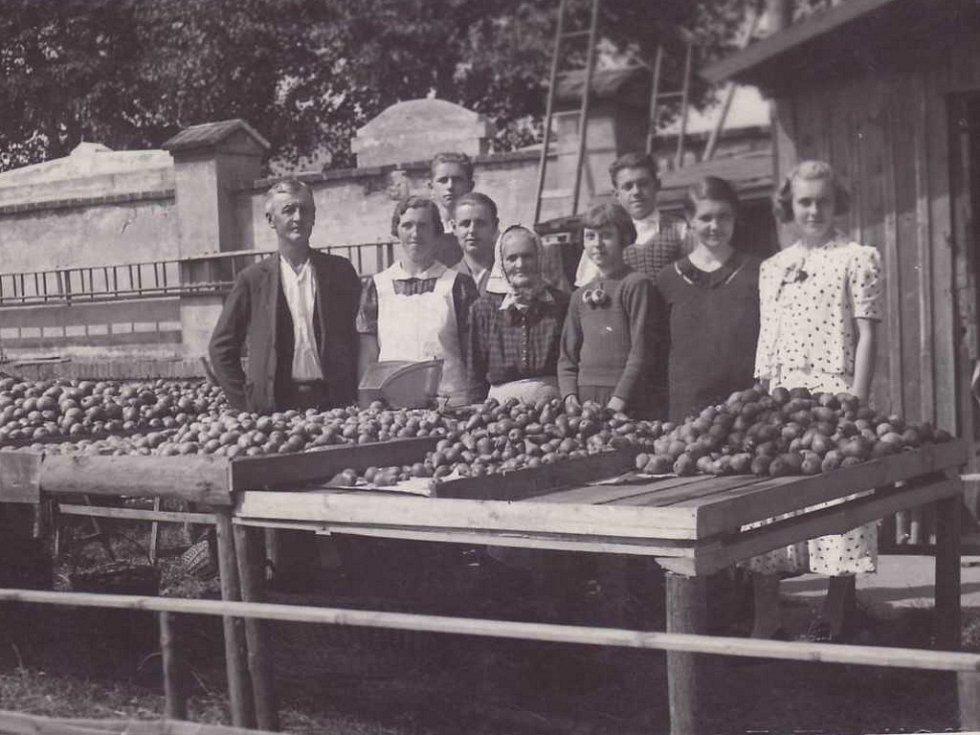Prodej ovoce v Oseku v roce 1937.