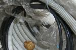 První pokus o zahnízdění v kabeláži se odehrál v roce 2010 v Elektrárně Tušimice ve výšce 280 metrů. Bohužel byl neúspěšný, vejce byla dlouho opuštěna a hlavně neoplozena.