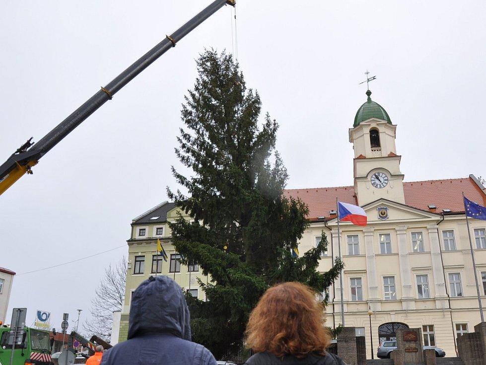 V pondělí 20. listopadu přivezli na náměstí Svobody do Teplic vánoční strom.