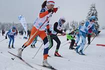 Zimní olympiáda dětí a mládeže - běžecké lyžování