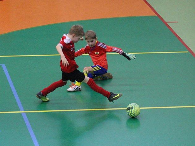 Zápas Junior Teplice - Dynamo Dresden U8
