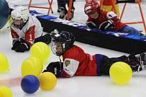 Nábor malých hokejistů v Teplicích
