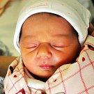 LEONTÝNA ŠUPEJOVÁ se narodila Petře Jiráčkové z Teplic 7. února v 17.41 hod. v teplické porodnici. Měřila 47 cm a vážila 2,70 kg.