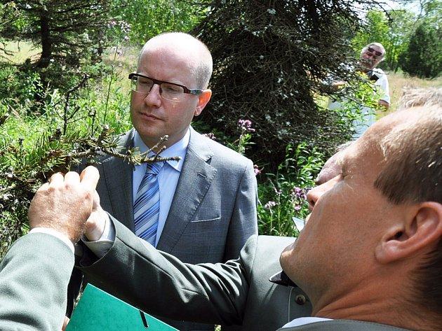 Vláda se bude zabývat obnovou lesů v Krušných horách, řekl při prohlídce smrkového porostu nad Dlouhou loukou premiér Bohuslav Sobotka