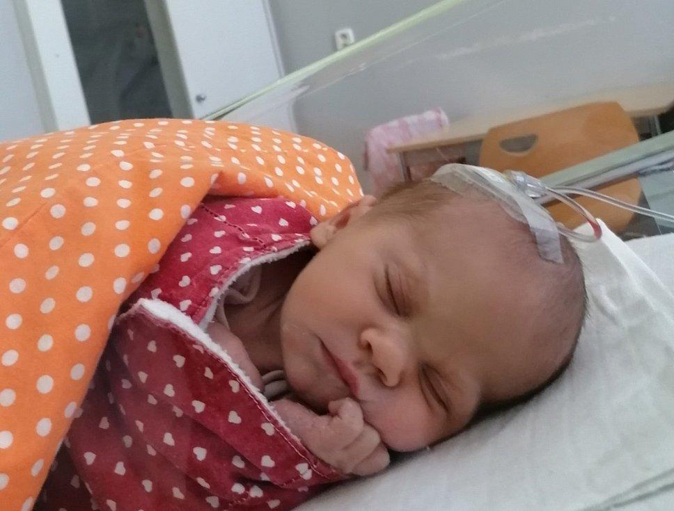Kateřina Dimitrov se narodila mamince Kateřině Dimitrov z Bystřan 24. května v 7.34 hodin. Měřila 49 cm a vážila 2950 gramů.