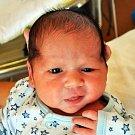Daniel Sixta se narodil Marii Sixtové z Hudcova 11. července  v 11.21 hod. v teplické porodnici. Měřil 51 cm a vážil 3,75 kg.