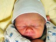ONDŘEJ ZÝKA se narodil Jitce Zýkové z Teplic 19. listopadu v 5.53 hod. v teplické porodnici. Měřil 46 cm a vážil 2,60 kg.