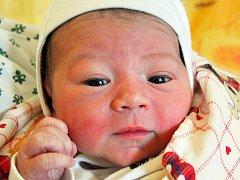 SEBASTIÁN FEDÁK se narodil  Erice Fedákové z Hrobu  15. února v 16.31 hod. v teplické porodnici. Měřil 48 cm a vážil 3,30 kg.