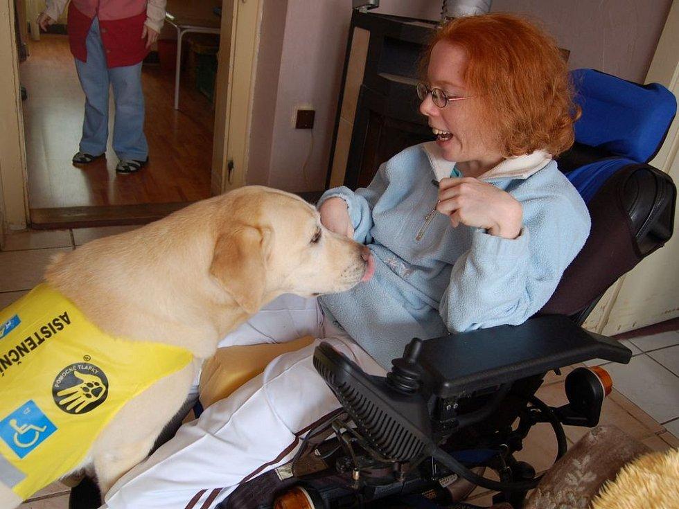 Speciálně vycvičený pes Ebi naslouchá povelu Daniely Machové z Mostu.