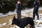 Policisté při kontrole chat na Dlouhé Louce.