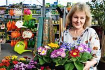 Monika Krtková ze zahradnictví Unient v Duchcově.