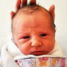 Martin Perman se narodil Lucii Frankové z Teplic 4. června v 15.16 hod. v teplické porodnici. Měřil 48 cm a vážil 3,1 kg.