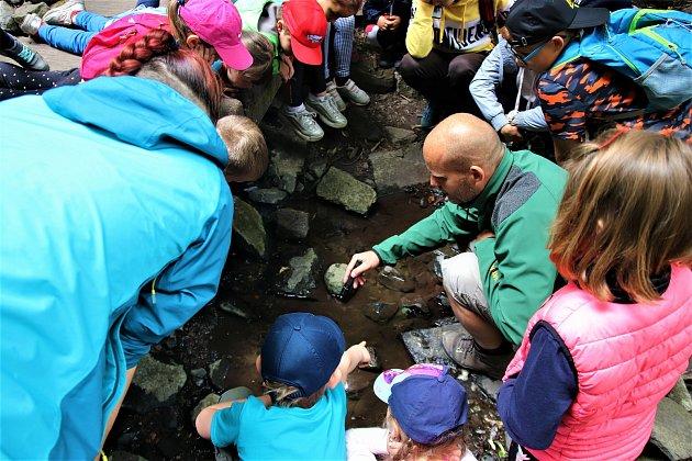 Zoolog ukazuje dětem živočichy ve vodě.