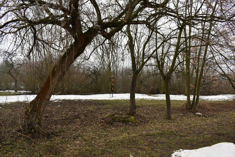 Třešňovka, jako vytipované vhodné místo pro budoucí atletický areál.
