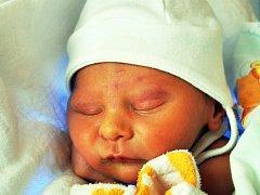 PETR PLECHÁČ se narodil Heleně Plecháčové z Teplic 4. ledna v 15.26 hod. v teplické porodnici. Měřil 46 cm a vážil 2,10 kg.
