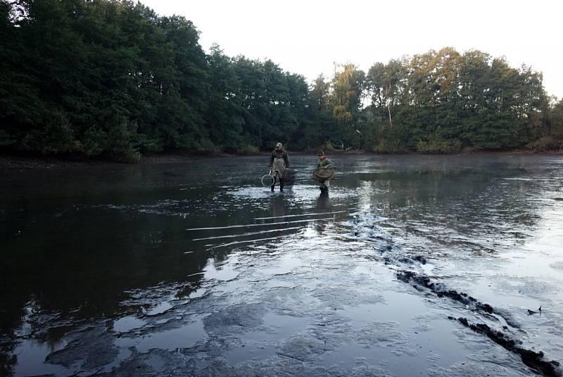 Výlovy rybníků Salát a Hájská v Duchcově.