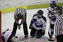 HC Stadion Teplice - HC Ústečtí Lvi 1:20