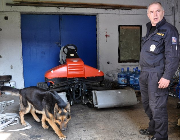 Cvičení psovodů PČR na stadionu Stínadla.