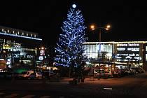 Vánoční strom v centru Teplic.