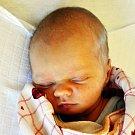 ROMAN SIROVÁTKA se narodil Jitce Papežové z Duchcova 1.11. ve 14.20 hod. v teplické porodnici. Měřil 51 cm a vážil 3,20 kg.
