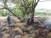 Požár travního porostu ve Fojtovicích.