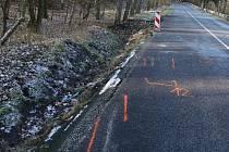 Policie na místo nehody do odstranění vraků nikoho nepustila, tak se aspoň podívejte, jak to vypadalo po otevření silnice. Tady se to stalo.