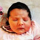 MIRIAM GRUNDZOVÁ se narodila Ireně Grundzové z Teplic 2.1. v 19.50 hod. v teplické porodnici. Měřila 52 cm a vážila 3,25 kg.