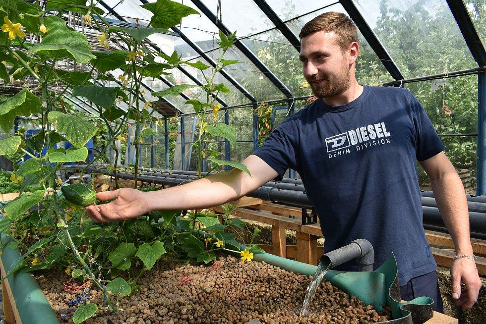 Pavel Lukáč staví ve sklenících v Oseku na Teplicku pultové záhony pro aquaponické pěstování