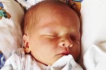 Štěpán Sláma se narodil Veronice Čihákové a Adamovi Slámovi  zTeplic  24. října  v12,34 hodin v teplické porodnici. Měřil 50 cm, vážil 3,55 kg.