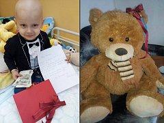Románek z Krupky bojuje s rakovinou