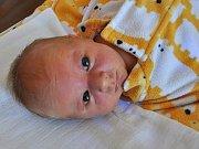 Miroslav Lothring se narodil Lucii Lothringové z Teplic 11. dubna v 13:58 hodin v teplické porodnici. Měřil 50 cm, vážila 3,55 kg.