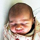 NINA KREJČÍ se narodila Veronice Dvořákové z Teplic 24. ledna v 0.31 hod. v teplické porodnici. Měřila 50 cm a vážila 3,05 kg.