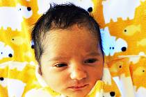 Raja Petková se narodila Andonii Petkové z Bíliny 3. června v 11,45 hodin v teplické porodnici. Měřila 49 cm, vážila 2,65 kg.