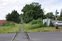 Mezi Krupkou a Proboštovem je trať hodně zarostlá, což znamená, že je už dlouho bez života.