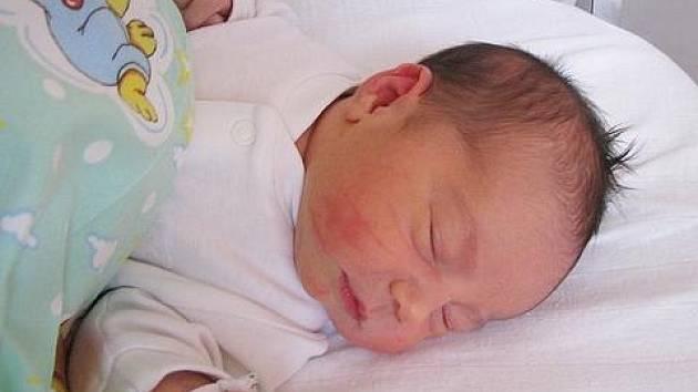 Lence Cardové z Krupky se 14. října ve 14.20 hod. v teplické porodnici narodila dcera Kateřina Cardová. Měřila 52 cm a vážila 3,90 kg.