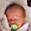 DOMINIK ONDOVČÍN se narodil Gabriele Schneiderové z Mostu 11. února v 3.38 hod. v teplické porodnici. Měřil 44 cm a vážil 3,0 kg.