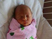 Rozálie Hodačová se narodila  Barboře Hodačové z Bíliny 4. dubna  v 18.21 hod. v ústecké porodnici. Měřila 47 cm a vážila 2,54 kg.