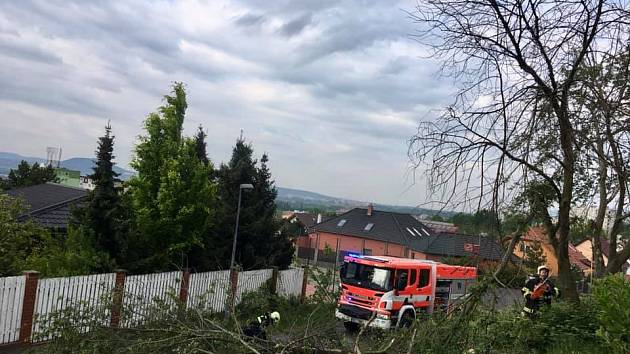 Když spadne strom, mají plné ruce práce hasiči.