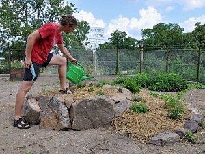V Teplicích vzniká komunitní zahrada