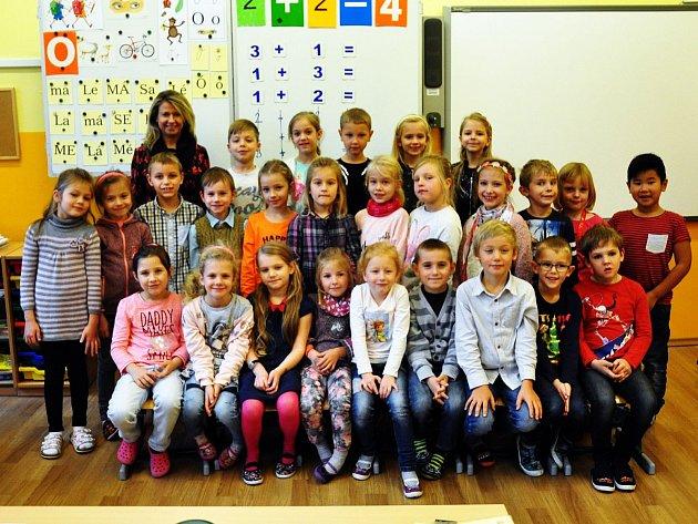 Na fotografii jsou žáci ze ZŠ Metelkovo náměstí, Teplice, 1.B třída paní učitelky Heleny Novotné.