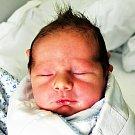 ŠTĚPÁN ZAJÁČEK se narodil Lucii Javůrkové z Bystřan 9. února v 5.40 hod. v teplické porodnici. Měřil 51 cm a vážil  3,75 kg.