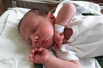 Viktorie Pintérová se narodila Anně Pavlíčkové v teplické porodnici 2. dubna v 16.54 hodin. Měřila 52 cm a vážila 4000 gramů.
