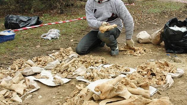 Archeologický výzkum potvrdil, že v centru Teplic existovalo pravěké osídlení