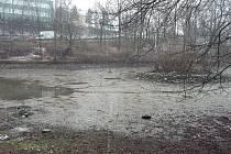 Dolní rybník v Zámecké zahradě v Teplicích.